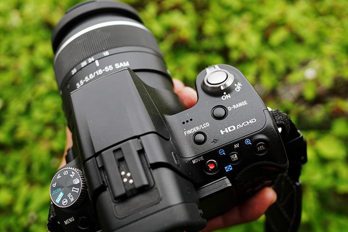 P2500431_DxO(Retina).jpg