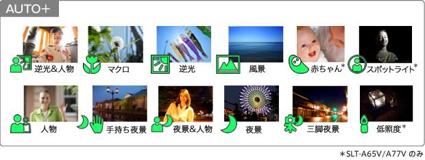 cut_03.jpg